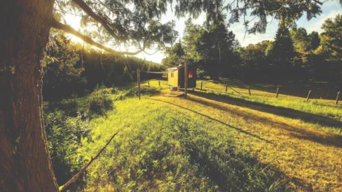 Un wagon de berger au loin