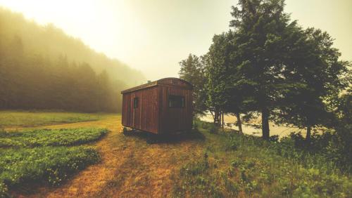 Un wagon de berger dans la brume
